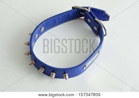 A blue dog collar decorated with spikes