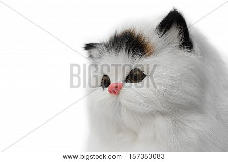 doll cat toy cute Close up beautiful on white background