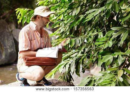 Outdoor Shot Of Ecologist Wearing Hat And Striped Shirt Sitting In Front Of Green Plant While Examin