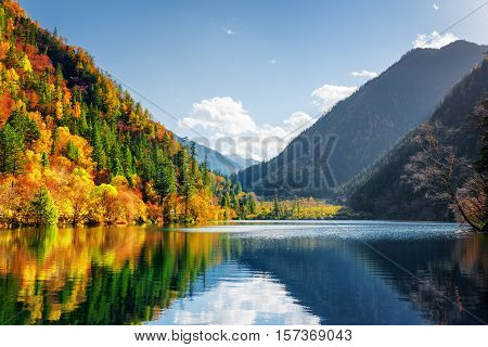 Scenic View Of The Panda Lake. Autumn Woods Reflected In Water