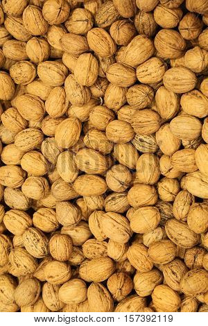 Background Of Small Organic Walnuts Just Harvested