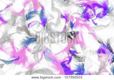 Soft fluffy brightly colored bird feathers background texture in the colors of the rainbow or spectrum in a close up view for a festive, carnival or holiday background