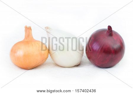Red and white onion isolated on white background. Three different kinds of onions
