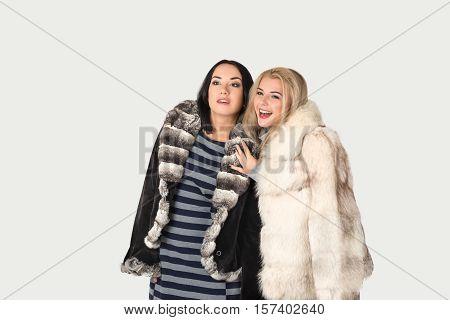 two girlfriends blonde and brunett in short fur coats walk