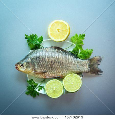 Fresh Fish Crucian