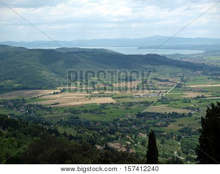 View of the olive groves and plains around Cortona. Umbria
