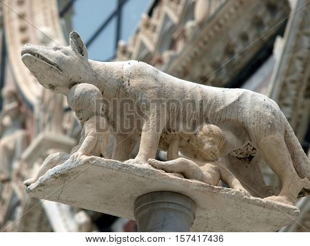 Siena - column with the she-wolf in front of the Duomo facade