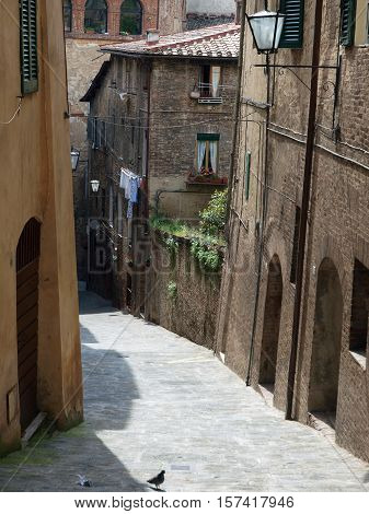 The picturesque streets of the historic center of Siena