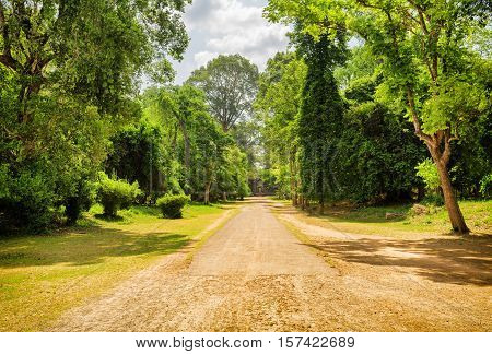 Road Through Rainforest In Ancient Angkor Wat, Cambodia