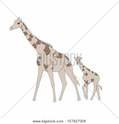 brown, animals, africa, illustration, giraffe, lines, cream, africa animals, one line, mother giraffe, baby giraffe