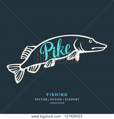 Modern hand drawn lettering word Pike. Calligraphy brush and ink. Vector illustration Fish