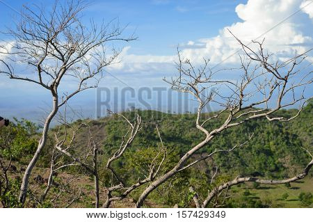 Dry vegetation in the landscapes of San Jacinto near Telica volcano Leon Department, Nicaragua
