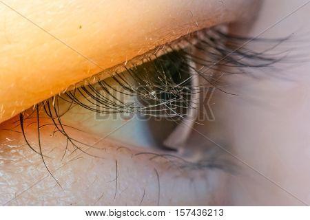 Macro of eye black color of asia human process in soft orange sun light style