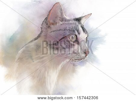 Cute cat. Watercolor portrait of a cat. Drawing of a cat with yellow eyes executed in watercolor. Good for print T-shirt. Hand painted watercolor cat illustration. Art background banner for pet shop.