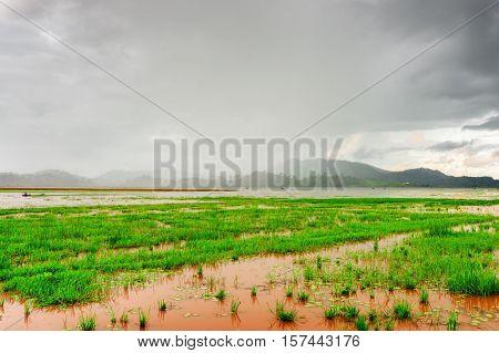 Scenic View Of The Lak Lake On A Rainy Day, Dak Lak Province