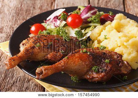 Roasted Duck Leg With Mashed Potatoes Garnish And Salad Mix Close-up. Horizontal