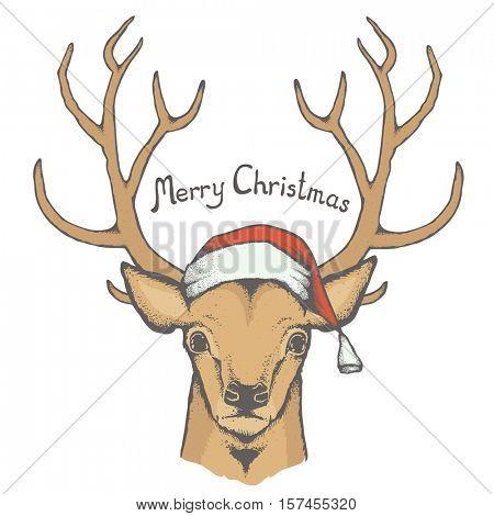 Christmas deer vector illustration. Reindeer head with horn and Santa hat. Inscription Merry Christmas
