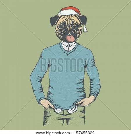 Pug dog vector illustration Christmas costume. Pug dog in human sweater or sweatshirt