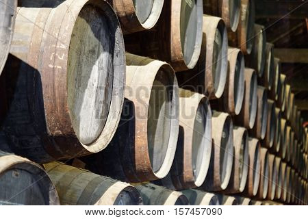 Numerous Oak Barrels Stacked In The Old Cellar With Aging Port Wine
