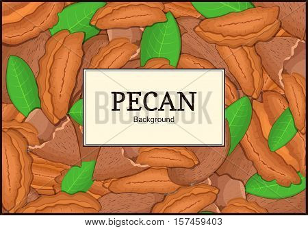 The square frame on pecan background. Vector card illustration. Nuts frame, pecan fruit in the shell, whole, shelled, leaves, appetizing looking for packaging design of healthy food