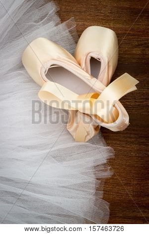 Pointe Shoes On The Background Tutu