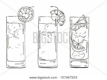 Hand Drawn Graphic Cocktails John Collins A Tequila Sunrise Cuba Libre On White Background
