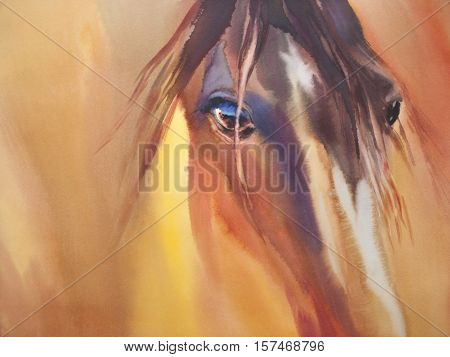 Horse and cute foal. watercolor handmade illustration