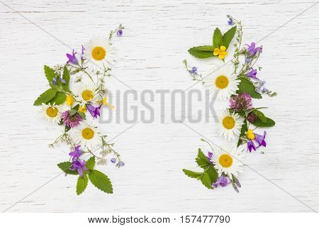 Top view on beautiful wild flowers on white wooden background. Frame wreath. Summer flowers leaves and petals. Clover daisy bell-flowers forget-me-not