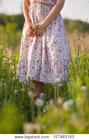 Woman on the flower meadow on a sunny summer day. Closeup of woman's hands holding wild flowers. Girl in nice dress walking in the green field. Outdoors. Lifestyle and happiness concept.
