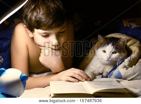 preteen handsome boy evening read book with cat in the bed before sleep