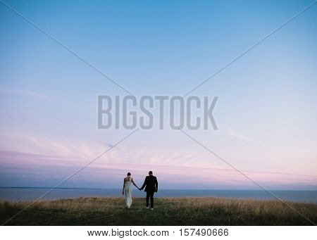 silhouettes of the bride and groom on a sunset background. romantic couple on a sunset background. wedding couple holding hands and go away.