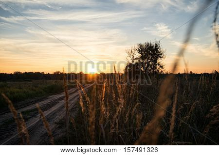 Sunset over country road. Bright dramatic sky. Countryside landscape under scenic summer cloudy sky in dusk.