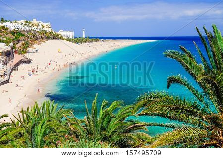 The beach Playa de Morro Jable with green palms view on the town and the Atlantic coast. Location the Canary island Fuerteventura Spain.