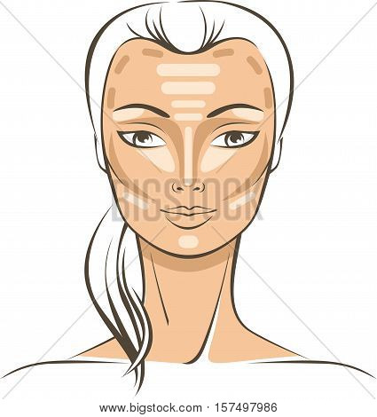 Face Sculpting With Makeup tutorial vector drawing