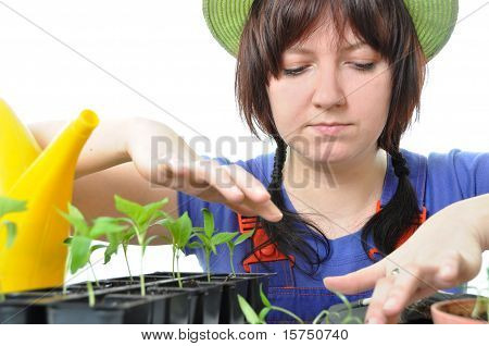 Woman Cultivation Garden Isolated