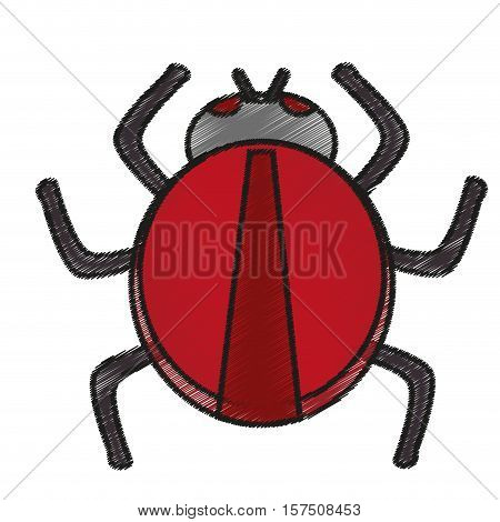 Bug icon. Insect pest bed infestation and parasite theme. Isolated design. Vector illustration