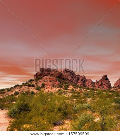 The Sonora desert in central Arizona USA