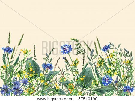 Panoramic view of wild meadow flowers and grass on yellow background. Horizontal border with flowers and herbs. Watercolor hand painting illustration.