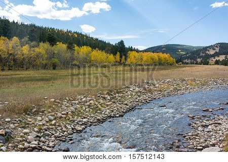 Creek Beside Field of Aspen Changing Color in Fall