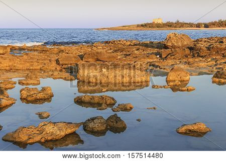 Torre Guaceto.BRINDISI (Apulia)-ITALY-Mediterranean maquis: a nature sanctuary between the land and the sea.In the background the watchtower .