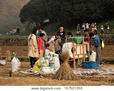 HANGZHOU, CHINA - NOVEMBER 19: Members of the public gather round a rice farmer as she processes rice from the harvest on November 19, 2016 in Hangzhou, China.