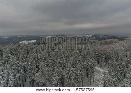 Snow forest from Krudum observation tower in winter time