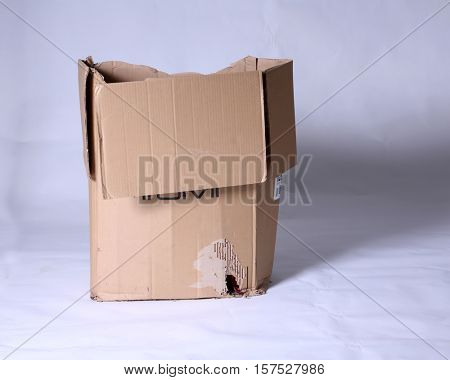 Mouse or Rat House. A cardboard box with a hole chewed into it by a Mouse or a Rat to make a house to stay safe and warm