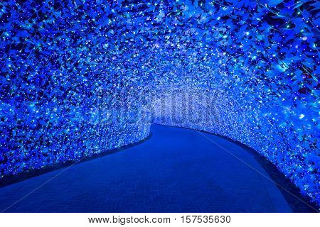 Nagoya, Japan. Nabana no Sato garden at night in winter