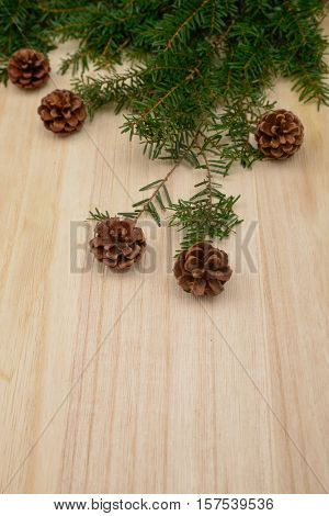 Pine cones and branch of fir-tree needles, -wooden background