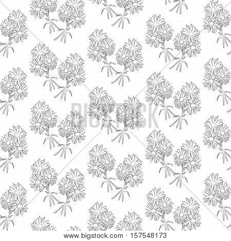 Seamless vector pattern with flowers camomile. Black and white background. All elements are not cropped and hidden under mask.