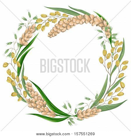 Wreath with rice,oat and millet. Cereals set. Collection decorative floral design elements. Vintage vector illustration in watercolor style.