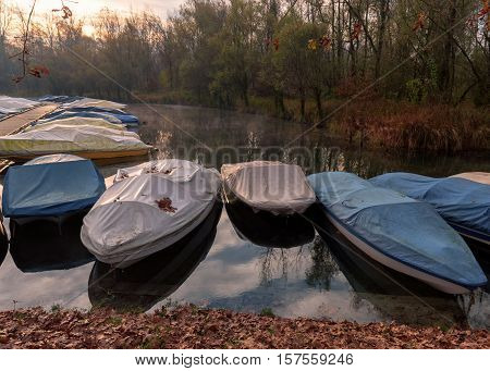 Ticino river and its forest and many covered anchored motorboats.