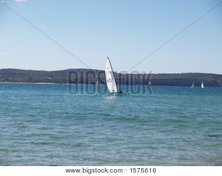Out For A Sail