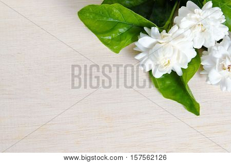 Jasmine Flower On Wood Board Background With Blank Copy Text Space